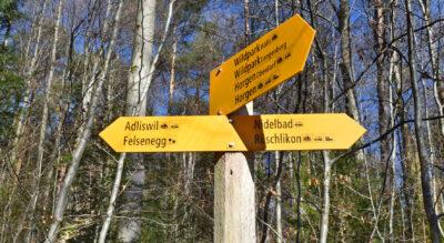 Wanderung von Adliswil zum Park im Grüene (Duttipark) in Rüschlikon