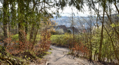 Wanderung von Adliswil auf den Uetliberg via Felsenegg, Balderen, Leimbach nach Zürich Wollishofen