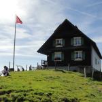 SZ: Alpwirtschaft Wildegg – Euthal
