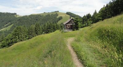 Wanderung auf dem Atzmännig zum Berggasthaus Chrüzegg 1265 m