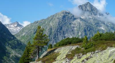 Wanderung vom Grimsel Hospiz, Grimselpass, am Stausee Grimselsee entlang zur Lauteraarhütte am Unteraargletscher