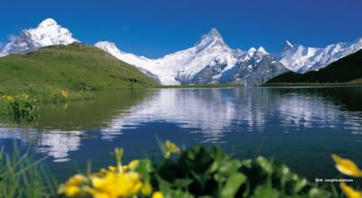 Wandeurng First – Bachalpsee – Faulhorn – Schynige Platte