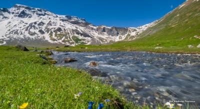Wanderung: Simmenfälle – Ammertenpass – Engstligenalp