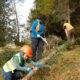 Bergwald Projekt – Das aktuelle Klima setzt dem Bergwald zu. Hitzesommer sind für die Bergwälder ein Stressfaktor. Herbststürme wüten in den Beständen. Die Freiwilligen des Bergwaldprojektes helfen mit, den Bergwald auch in dieser Situation zu pflegen und zu stärken.