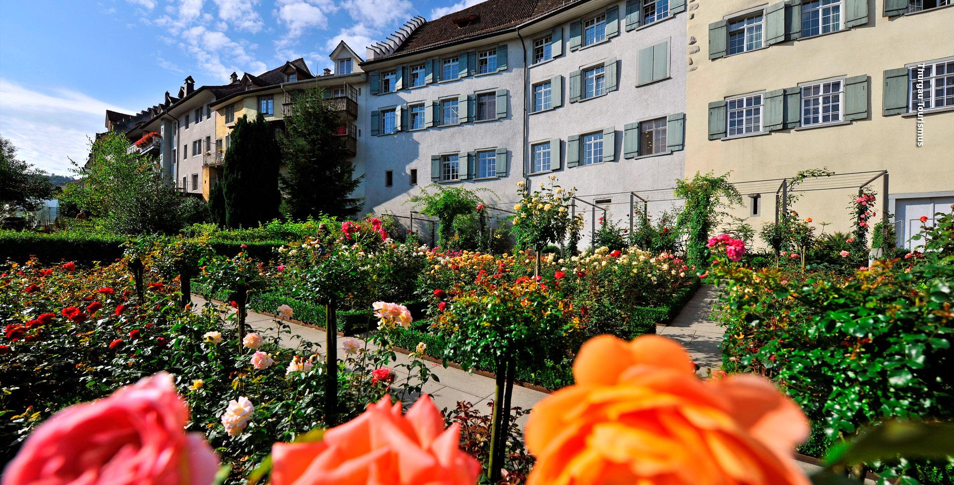 Wanderung auf dem Thurgauer PanoramawegvonBischofszell nachWil SG (Etappe 2). Auf dem nur gerade734 Meter hohen Nollen, die Rigi des Thurgaus, bietet sich eine fantastische Rundsichtvom Bodensee bis in dieAlpen.