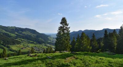 Wanderung: Holzegg – Ibergeregg – Oberiberg