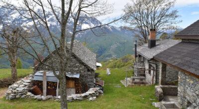 Wanderung im Centovalli vom Monte Comino, oberhalb Verdasio, via Costa, Pila nach Intragna