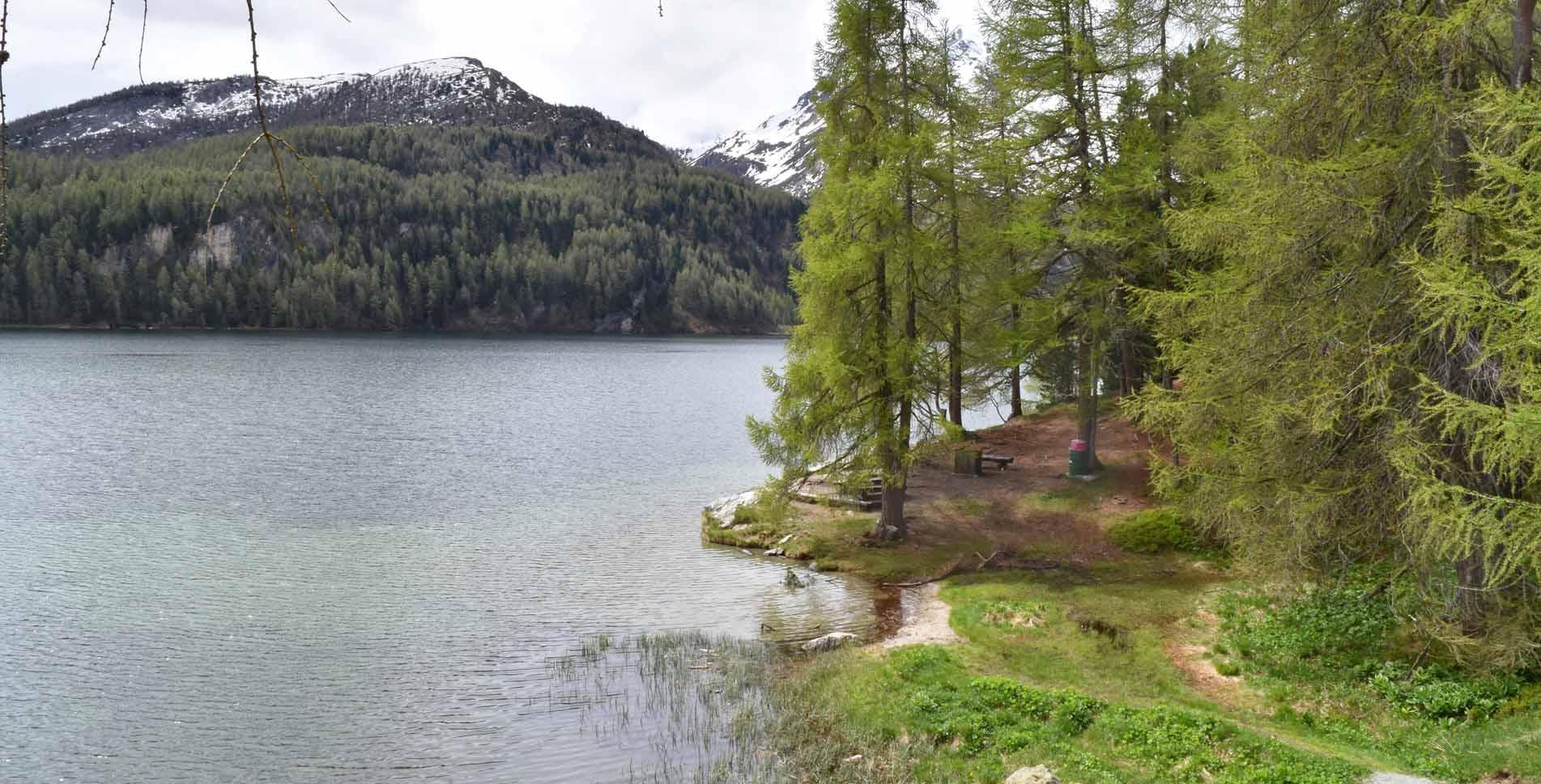 Wanderung von Sils Maria im Engadin zur Halbinsel Chastè im Silsersee, zum Nietzsche Gedenkstein und weiter via Sils Baselgia zurück nach Sils Maria – eine schöne Rundwanderung