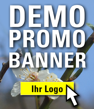 demobanner_300x350