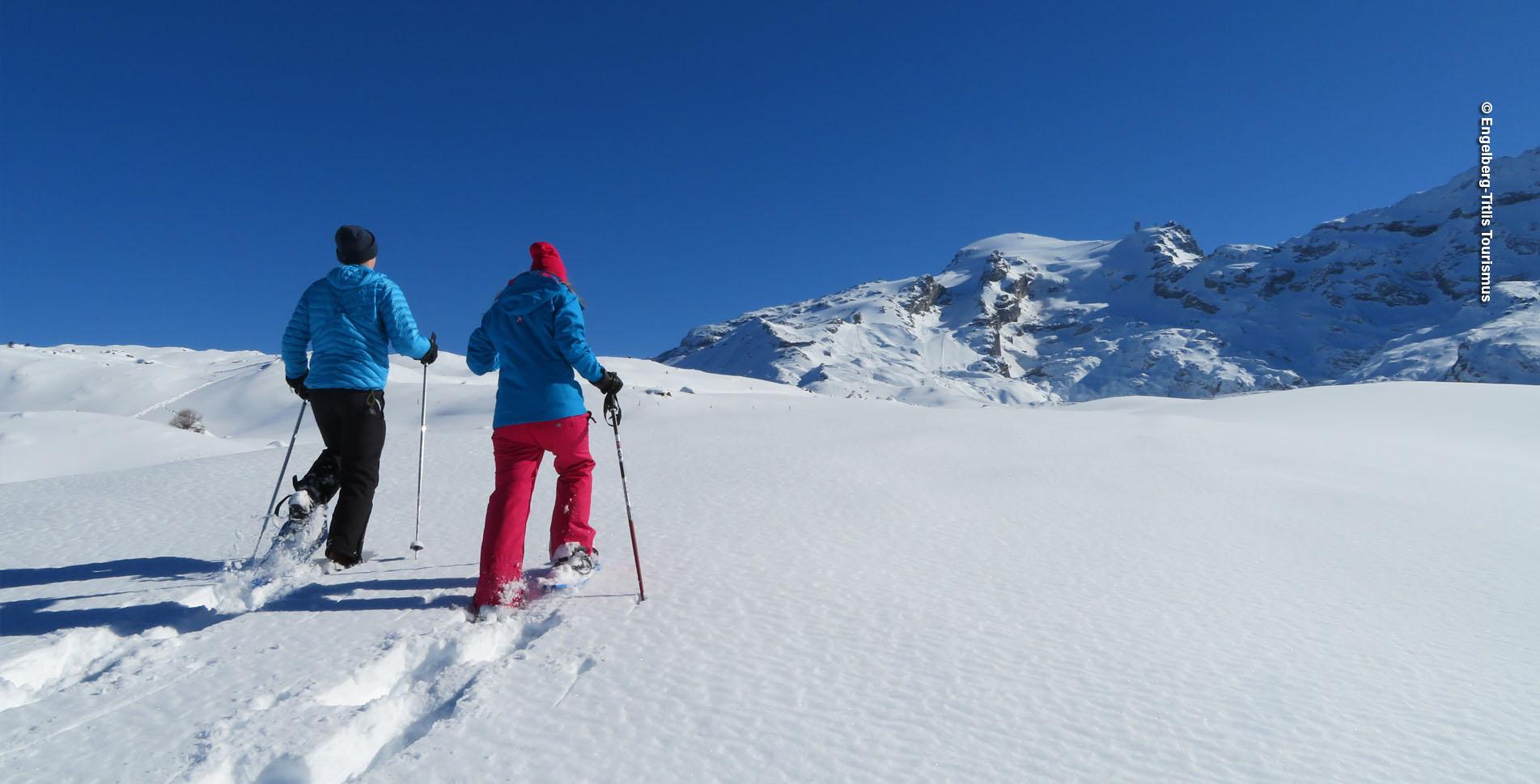 Schneeschuhwandern oberhalb Engelberg auf dem Schneeschuhtrail Obertrübsee gehts rund um den Trübsee mit Blick auf den den schneebedeckten Titlis