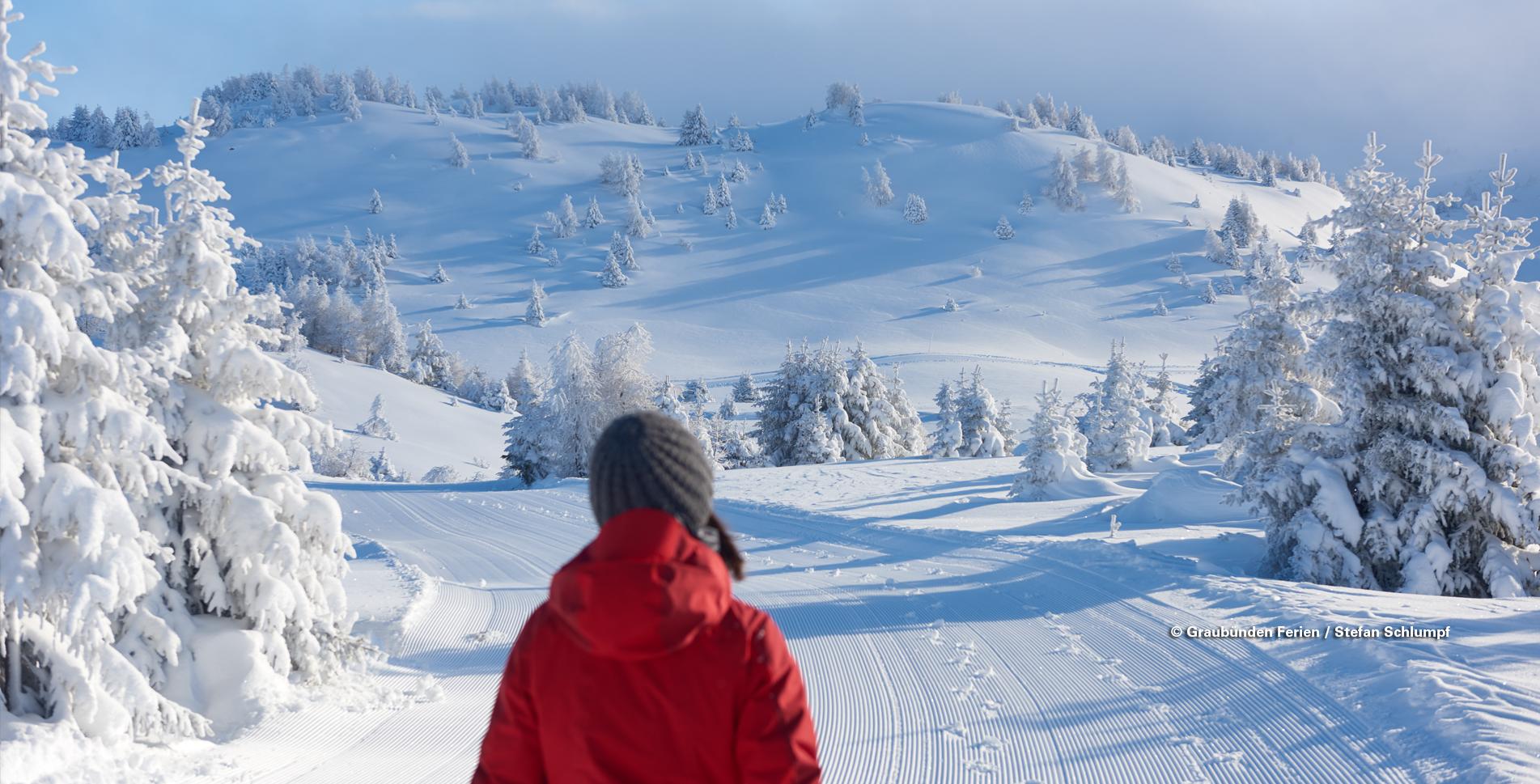 In winterlicher Landschaft wandern ist ein ganz besonderer Genuss. Diese Winterwanderung führt von der Sonnenterrasse Feldis, bei Rhäzüns, noch höher hinaus.
