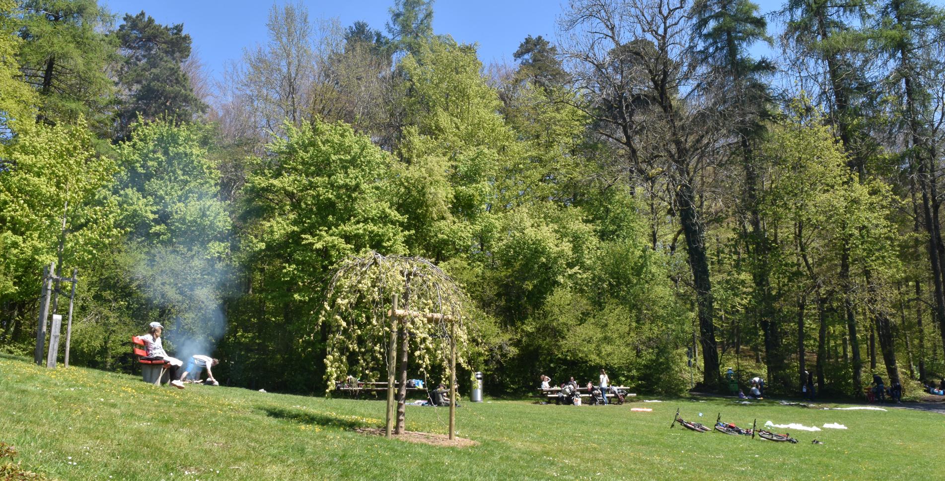 Wanderung von Horgen via Käpfnach, Aabachtobel, Arn, Horgenberg, Horgener Bergweiher / Weiher, Waldweiher, Gattikerweiher nach Langnau-Gattikon