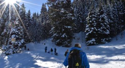 Winterwanderung in den Flumserbergen von der Tannenbodenalp via Winkelzahn zur Seebenalp