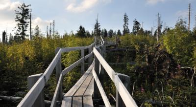 Wanderung auf dem Gantrisch Panoramaweg im Naturpark Gantrisch von Gurnigel Bad via Gurnigel Berghaus, Stierenhütte, Gägger, Gäggersteg (Lotharsteig), Pyffe nach Zollhaus FR