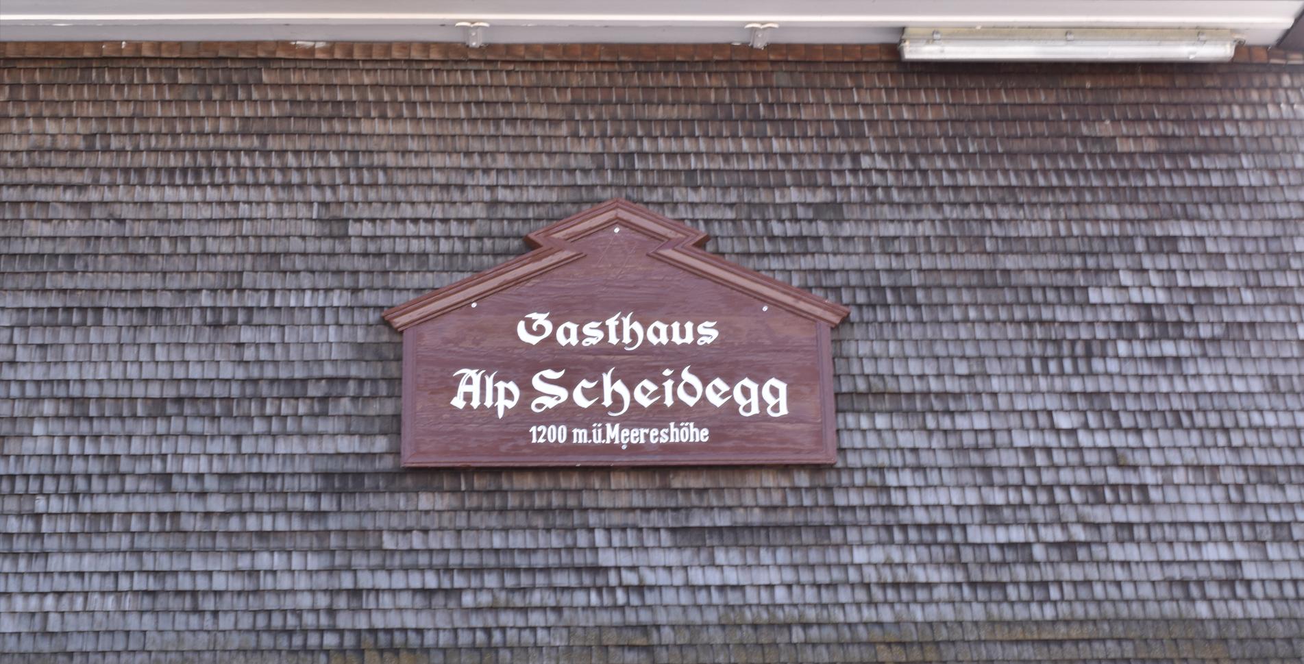 Wanderung im Zürcher Oberland, im Tösstal, von Wald zur Alp Scheidegg nach Fischenthal