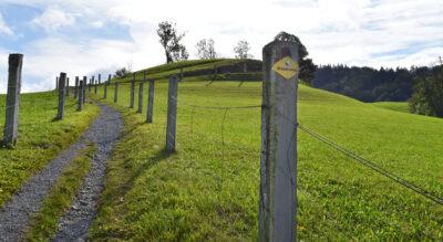 Wanderung von Gfell bei Sternenberg zum Berggasthaus Hörnli im Zürcher Oberland und hinab nach Steg im Tösstal