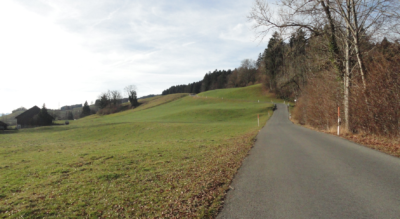 Wanderung von Gibswil zum Bachtel-Kulm nach Wald im Zürcher Oberland