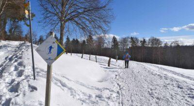 Schneeschuhwanderung von Girenbad auf den Schauenberg (892 m.ü.M.) im Turbenthal, Züri Oberland / Zürcher Oberland
