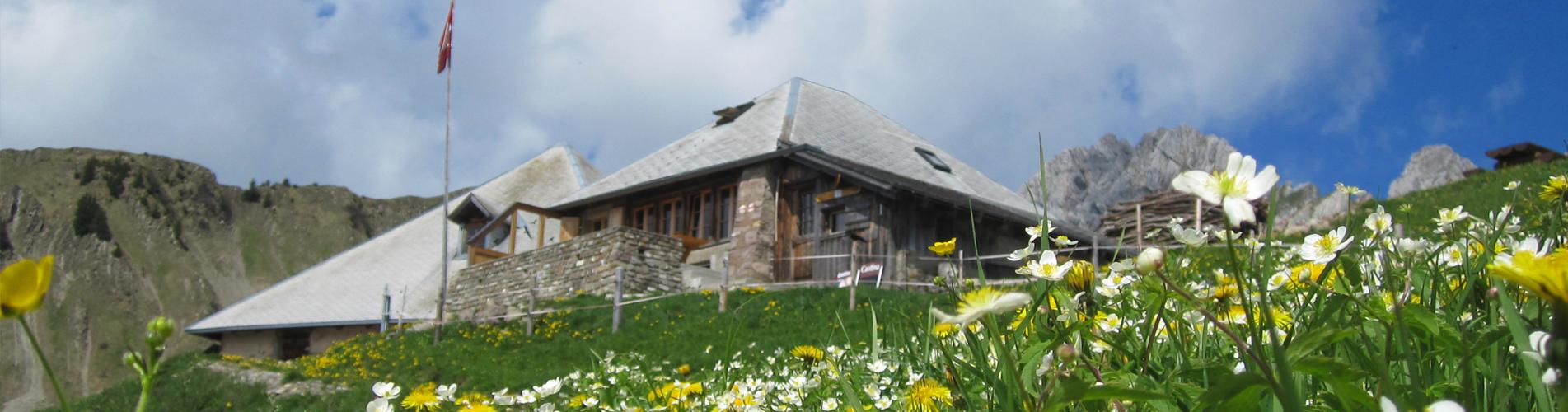 Hüttenwanderungen Schweiz zu SAC-Hütten, von Hütte zu Hütte wandern
