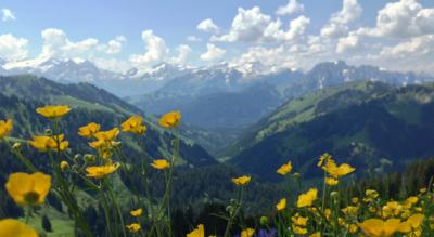 Wanderung vom Rellerligrat / Rellerli bei Schönried über den Hugeligrat zur Grubenberghütte mit Abstieg über das Vallée des Fenils / Grischbachtal nach Saanen