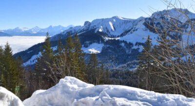 Winterwandern auf dem Gurnigel im Naturpark Gantrisch auf dem Selibüel-Winterwanderweg