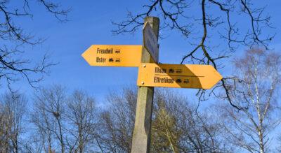 Wanderung von Illnau (Effretikon) zum Naturschutzgebiet Wildert und weiter via Guntenswil, Freudwil nach Uster