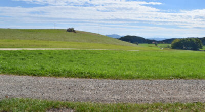 Wanderung rund um den idyllischen Egelsee. Dergrösste Natursee im Kanton Aargau, zwischen Mutschellen (Bellikon), Bergdietikon und Spreitenbach, liegtmitten im Naturschutzgebiet mit vielen seltenen Pflanzen und Tieren.Lauschige Feuerstellen und Badeplätzen laden zum Verweilen ein. Route: Kindhausen AG – Egelsee – Heitersberg – Kindhausen AG