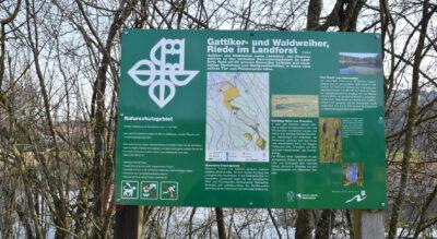 Wanderung von Langnau-Gattikon via Gattikerweiher, Waldweiher, Besucherzentrum Sihlwald, Sihluferweg zurück nach Langnau-Gattikon