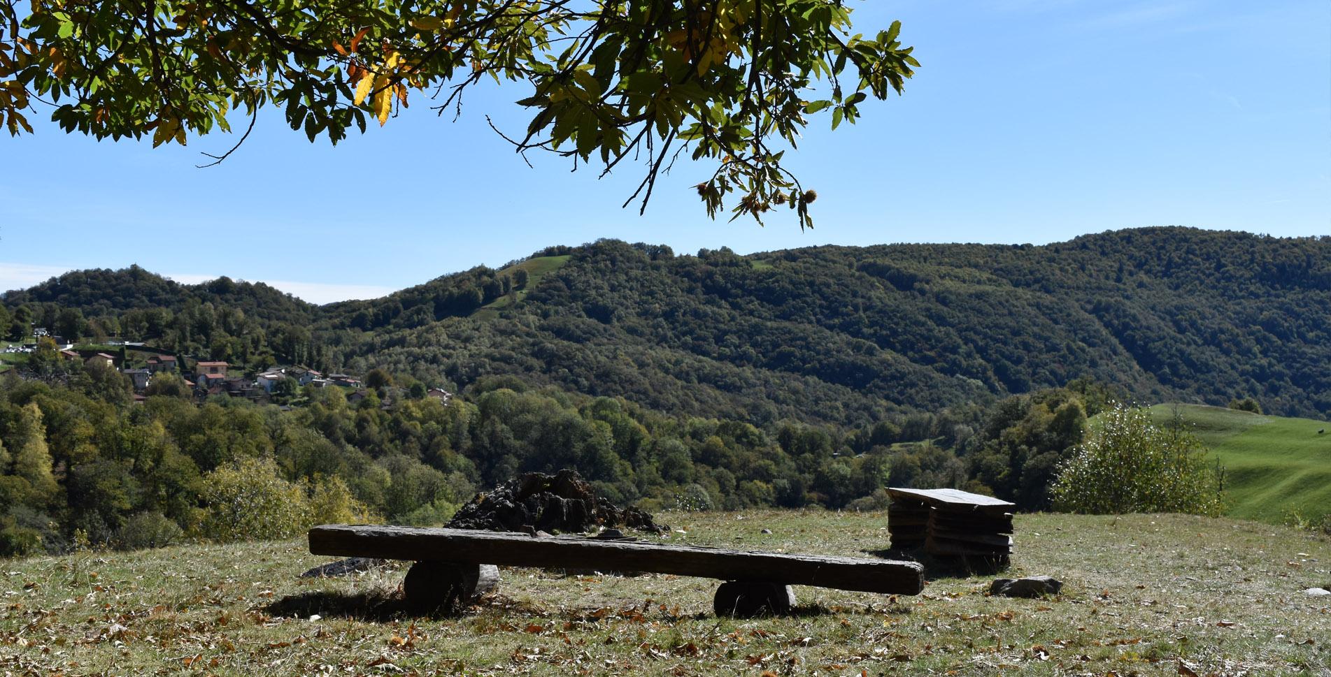Rundwanderung / Wanderung auf dem Kastanienweg / Sentiero del Castagno (Themenweg) durch den Alto Malcantone (Arosio) von Arosio via Mugena, Vezio und Fescoggia zurück nach Arosio