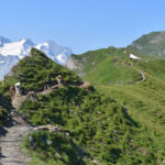 Melchsee-Frutt, Tannensee – Balmeregghorn – Planplatten / Alpen tower (Horizontweg)