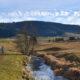Wanderungen durch Moorlandschaften – Flach- und Hochmoore