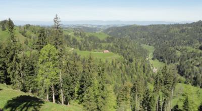 Wanderung: Lüderenalp – Napf – Luthern Bad