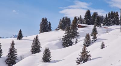 Winterwanderung im Naturpark Beverin auf dem Heinzenberg von Tschappina / Obertschappina via Oberurmein, Obergmeind zurück nach Obertschappina