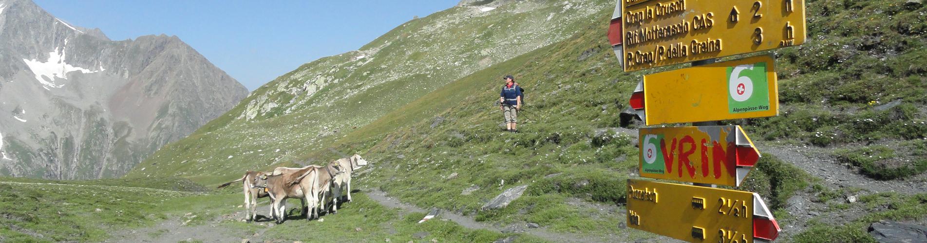 Wanderungen Graubünden – Engadin