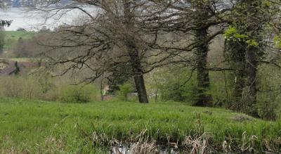 Wanderung: Forch – Pfannenstiel, 853 m.ü.M. – Meilen