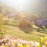 Prättigauer Höhenweg (Etappe 1), Madrisa (Klosters) – St. Antönien