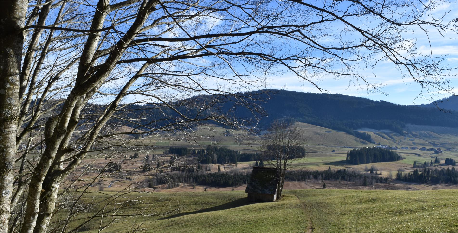 Wanderung vom Raten nach St. Jost und zum grössten Hochmoor bei Rothenthurm via Schwyzerbrugg nach Biberbrugg.