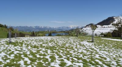 Wanderung von Richterswil am Zürichsee via Mülibachtobel, Sternensee / Sternenweiher, Samstagern, Hüttnersee nach Schönenberg