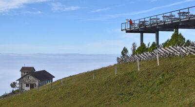 Wanderung auf der Rigi von Rigi Kulm via Rigi Staffel nach Rigi Klösterli
