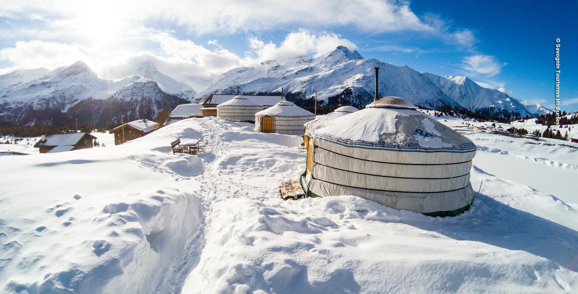Schneeschuhtour / Schneeschuhwanderung im Parc Ela zur Alp Flix von Sur via Courts, Cotti Agrikultur, Tga d'Meir, Tigias, Piz Platta zurück nach Sur