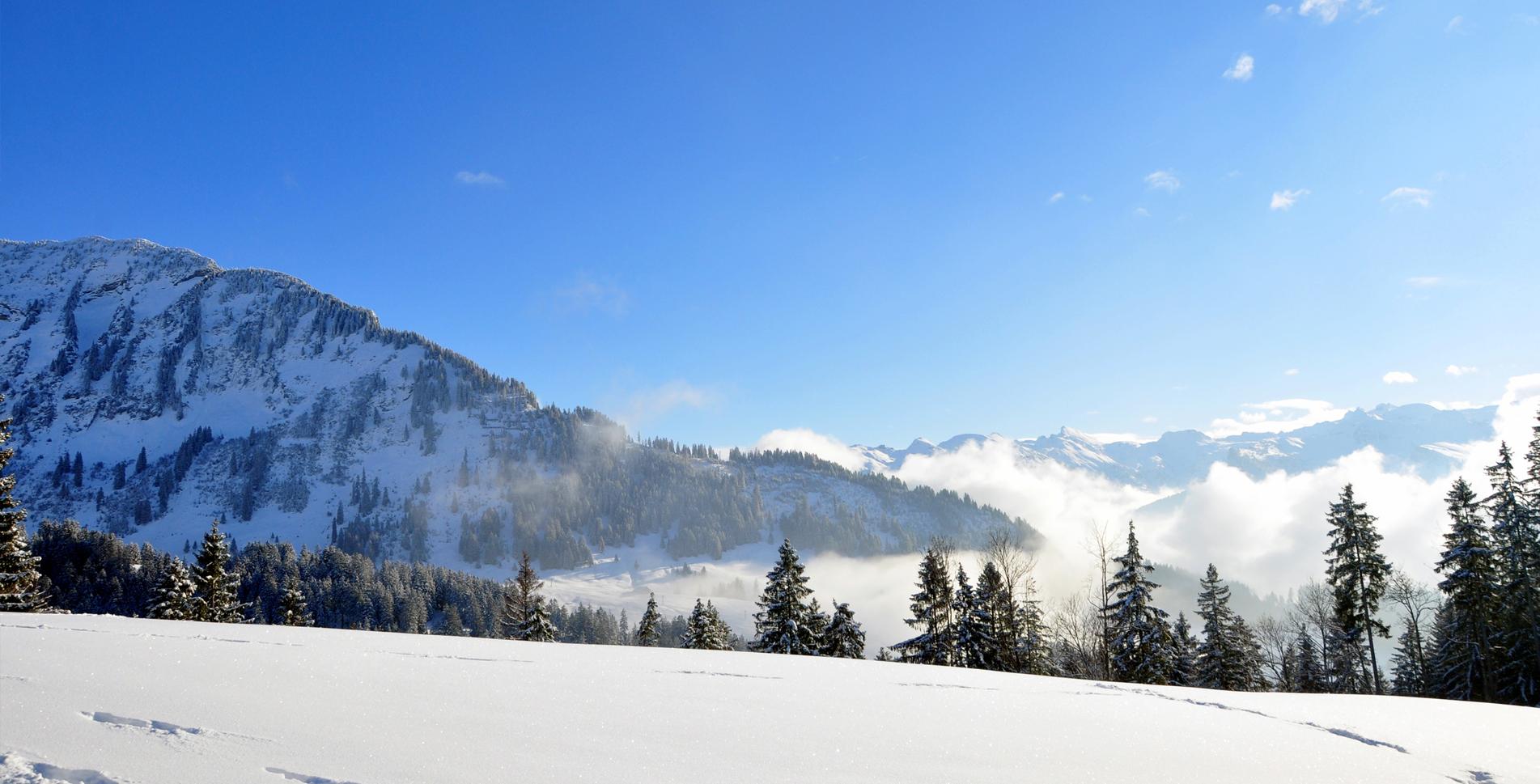 Schneeschuh-Rundtour auf der Sonnenterrasse Amden von Arvenbüel auf dem Egg Schneeschuh-Trail auf dieEgg mit einmaliger Aussicht auf die Glarner Alpen.