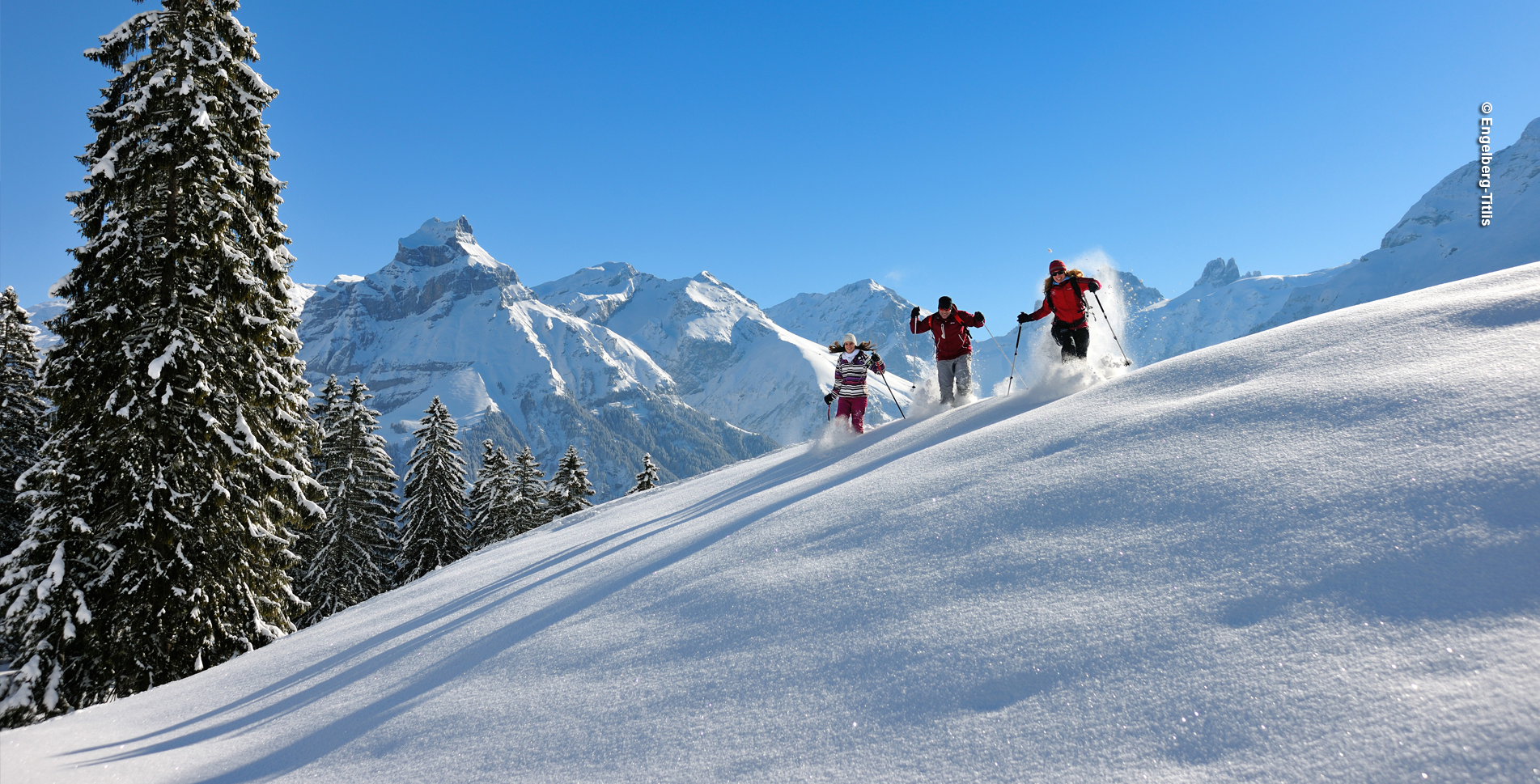Schneeschuhtour oberhalb von Engelberg (Titlisbahn) von der Gerschnialp via Café Ritz, Hinter Stafel, Schlegi, Restaurant Untertrübsee, Jungholz, Hungerbodenwald zurück zur Gerschnialp