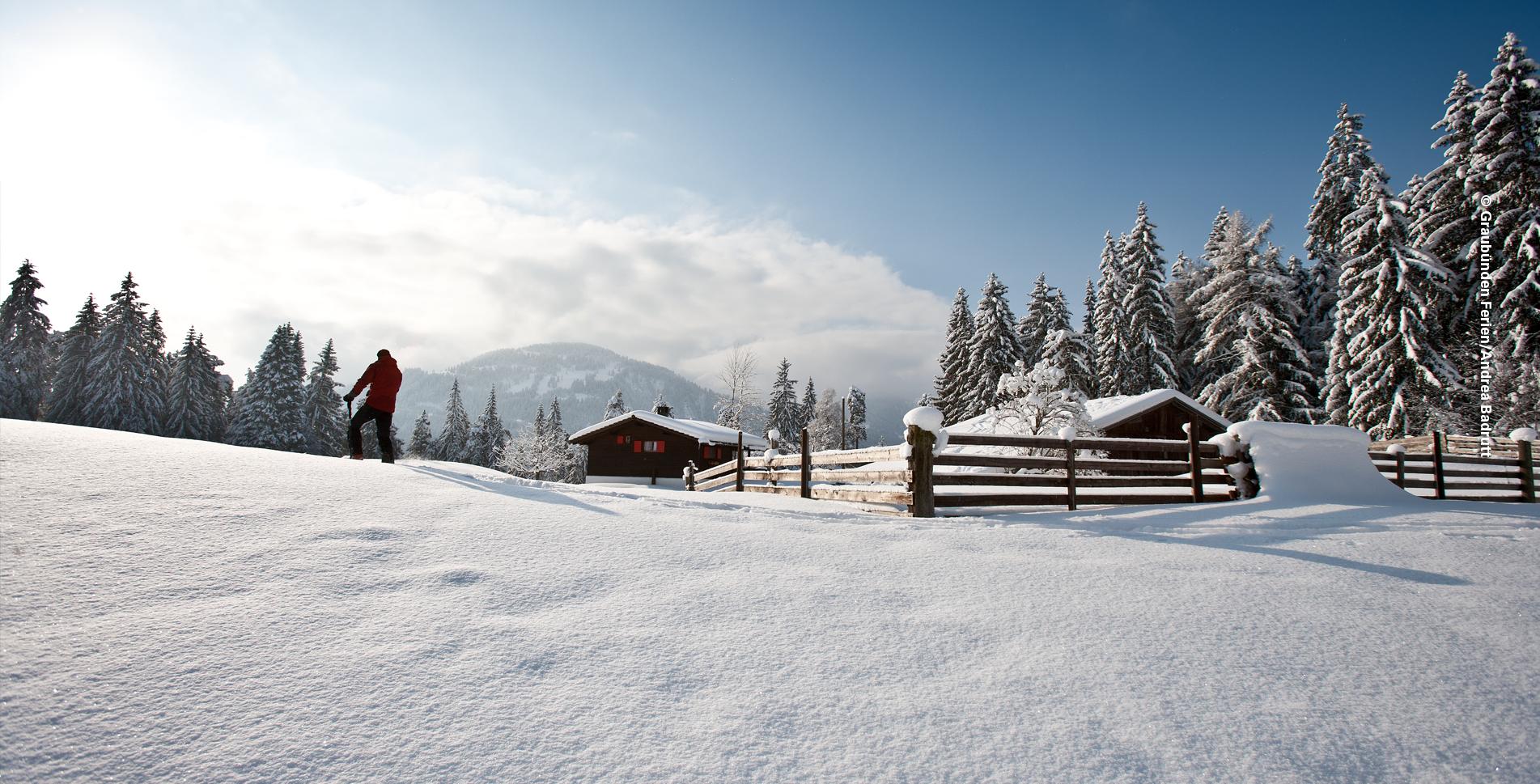 Schneeschuhtour in der Region Flims Laax von Falera zur Bergstation Curnius