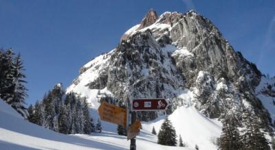 Schneeschuhtour im Alpthal von der Holzegg via Zwäcken, Furggelenstock, Furggelen nach Brunni