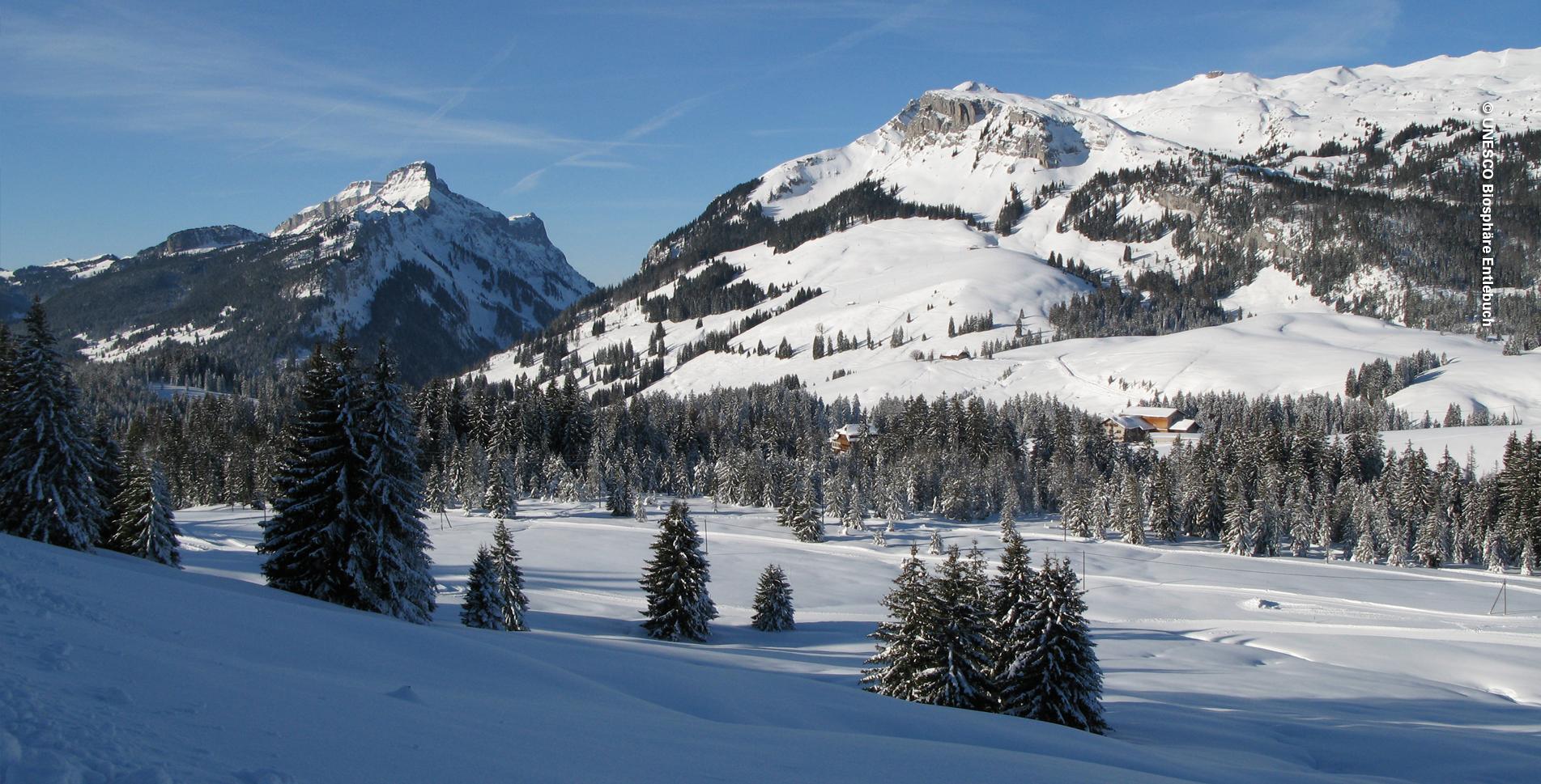 Schneeschuhtour von Sörenberg via Blattenegg zum Salwideli