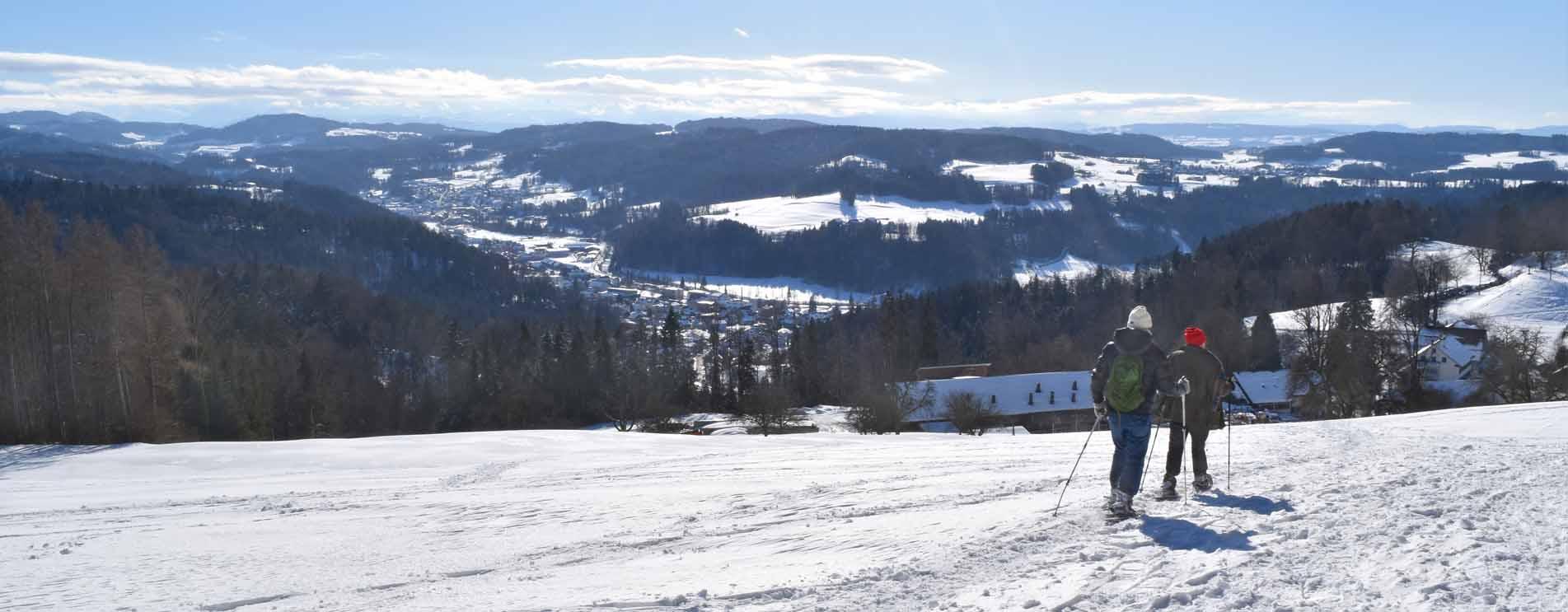 Schneeschuh-Rundwanderungen ohne Bergbahn – Die schönsten Schneeschuhtouren und Schneeschuhtrails ohne eine Bahn zu benützen
