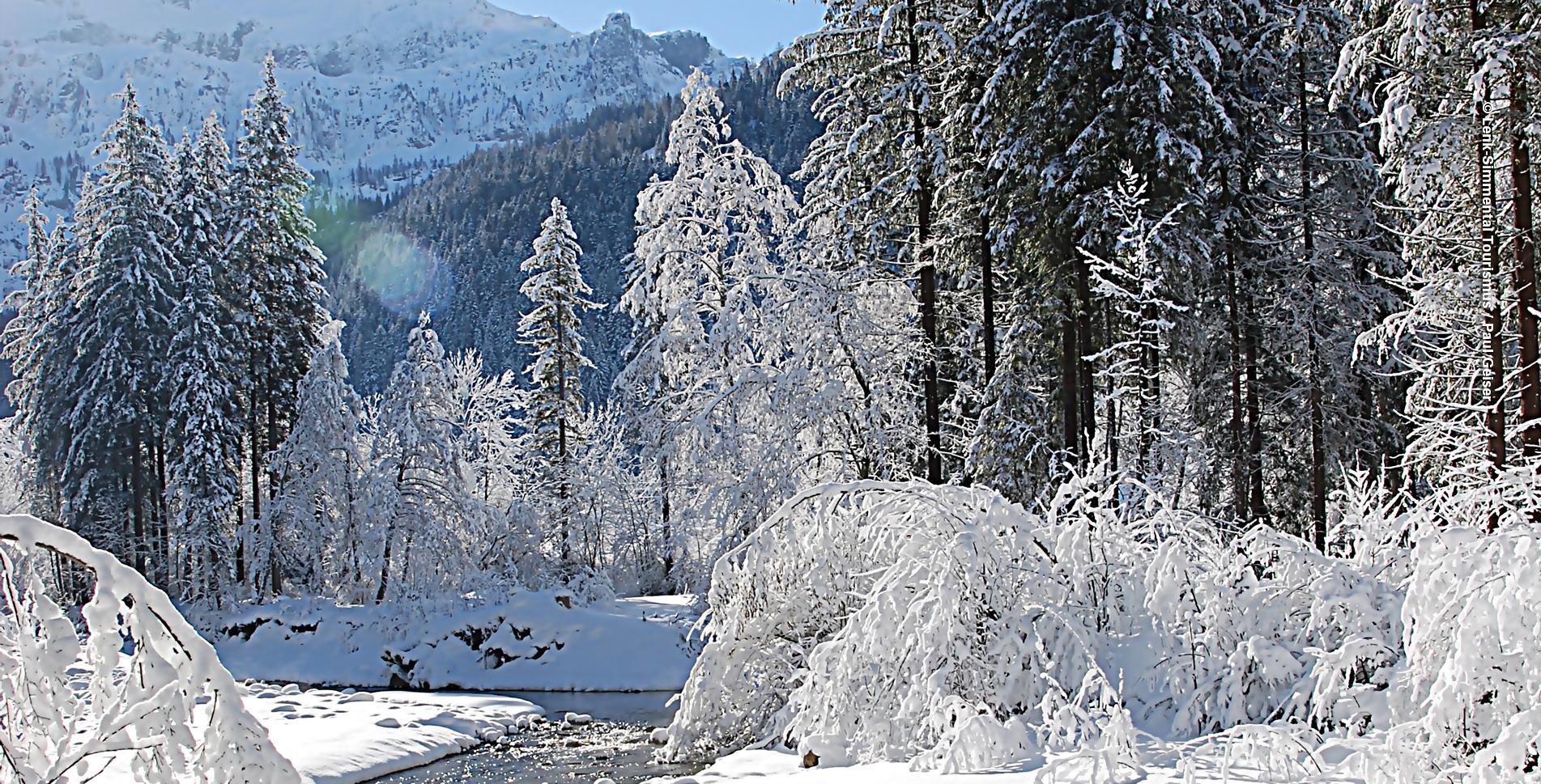 Schneeschuhtour von der Lenk im Simmental (Berner Oberland) zum Iffigfall auf dem Iffigfall Trail