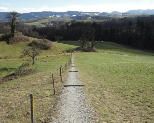 Wanderung: Albispasshöhe – Albishorn – Hausen a.A.