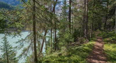 Wanderung im Val dal Spöl und Schweizerischen Nationalpark zur Alp Margun Grimmels (Zernez)