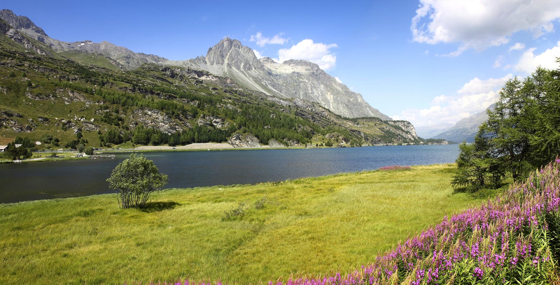 Wanderung rund um den Silsersee (Rundwanderung) von Sils-Maria via Isola, Palü da Lägh / Maloja, Splüga, Alp Grevasalvas, Sils-Baselgia, Chastè zurück nach Sils